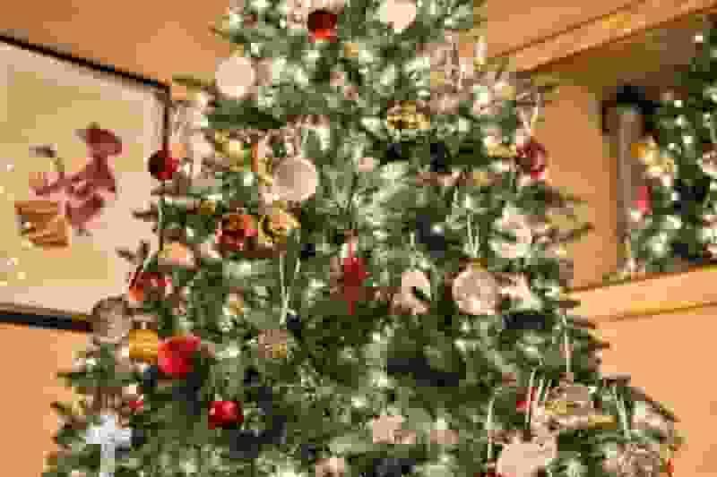 Weihnachtsbaum loben